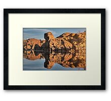 Granite Rorschach Framed Print