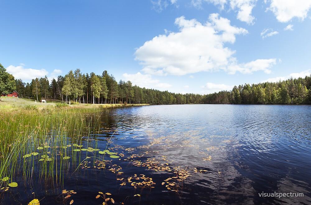 Scandinavian Lake & Forest by visualspectrum