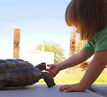 Turtle Friend by Jenna Boettger Boring