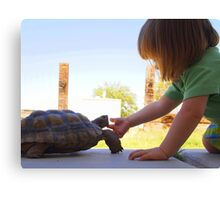 Turtle Friend Canvas Print