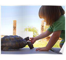 Turtle Friend Poster