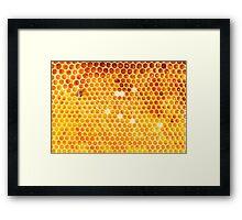 Honeycomb Framed Print