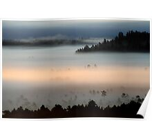 3.9.2013: Morning in Torronsuo National Park I Poster