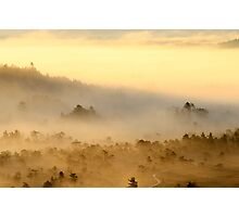 3.9.2013: Morning in Torronsuo National Park III Photographic Print