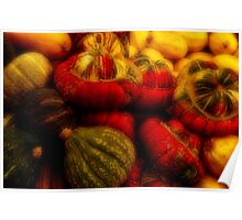 Gourds Of St. Jacobs Poster