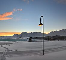 The Light Is On by Peter Kurdulija