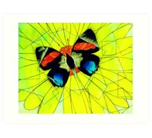Butterfly on Flower Oil Pastel Art Print