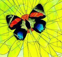 Butterfly on Flower Oil Pastel by Jonesy235