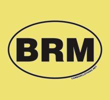 Blue Ridge Mountains BRM Kids Tee