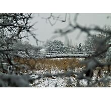 Eling in the snow Photographic Print