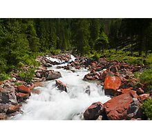 Alpine Brook Photographic Print