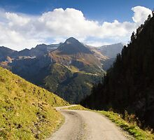 Alpine Road by Walter Quirtmair