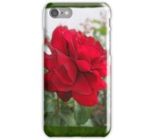 Red Rose Edges Blank P1F0 iPhone Case/Skin