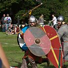 Medieval Fighters by Colin Bentham