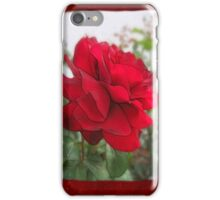 Red Rose Edges Blank P5F0 iPhone Case/Skin
