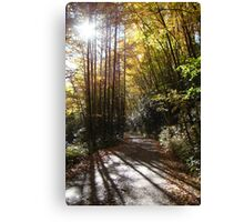 Land of the Noonday Sun Canvas Print