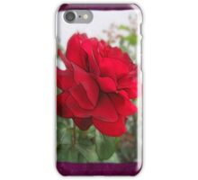 Red Rose Edges Blank P8F0 iPhone Case/Skin