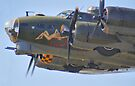 Sally B Thunders Past - Shoreham Airshow 2013 by Colin J Williams Photography