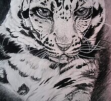 Clouded Leopard Study by artistichamster