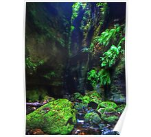 Claustral Canyon - Blue Mountains National Park Poster