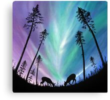 Deer grazing over Northern Lights Canvas Print