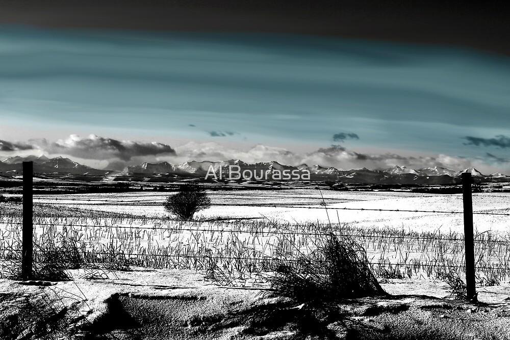 Winter Carpet To The Rockies by Al Bourassa