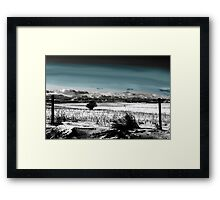 Winter Carpet To The Rockies Framed Print