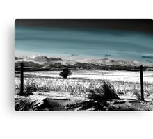 Winter Carpet To The Rockies Canvas Print