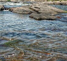 Shallow Waters by SarahEL17