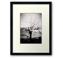 Arches National Park Holga Double Exposure Photo Framed Print