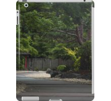 Path to Zen iPad Case/Skin