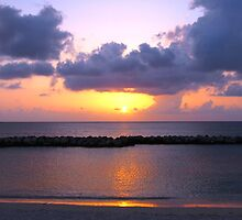 Pink and Purple Seven Mile Sunset in the Caribbean by Amy McDaniel
