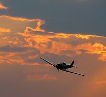 Japanese Zero Fighter Plane at Sunset by Amy McDaniel