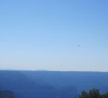Eagle Over Misty Canyon   by Elizabeth Aubuchon