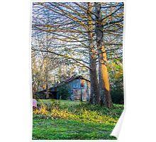 Cypress at the Barn Poster