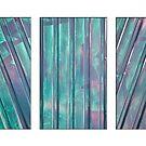 Lines - Triptych by PhotosByHealy