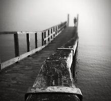 Solitude in Mist by Peter Denniston