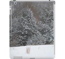 Rural Snow iPad Case/Skin