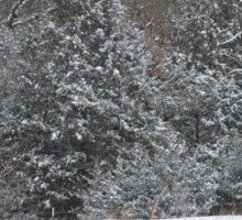 Rural Snow Sticker