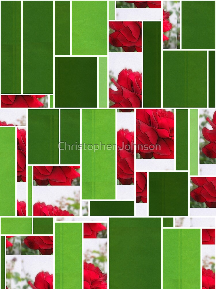 Red Rose Edges Art Rectangles 12 by Christopher Johnson