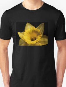 Daffy-Down-Dilly  T-Shirt