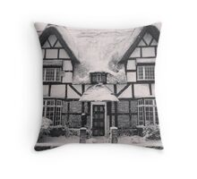 Snowy country day Throw Pillow
