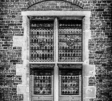 Coat of Arms Window by FelipeLodi