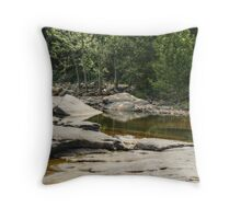 Relaxing Spot by the James Throw Pillow