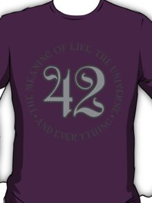 42 is the meaning of life T-Shirt