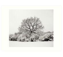 Snowy Tree Art Print