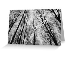 Spring Trees - Black and White 2 Greeting Card