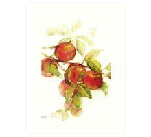 autumn apples watercolor Art Print