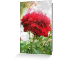 Red Rose with Light 1 Sketchy Greeting Card