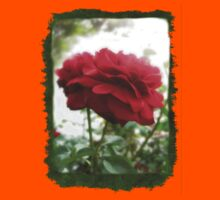 Red Rose with Light 1 Blank P1F0 Kids Clothes